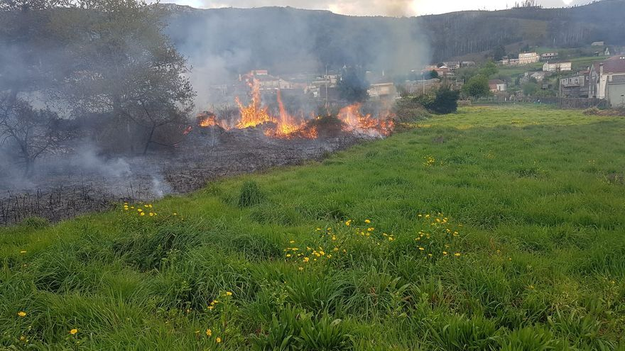 Incendio forestal en Catoira