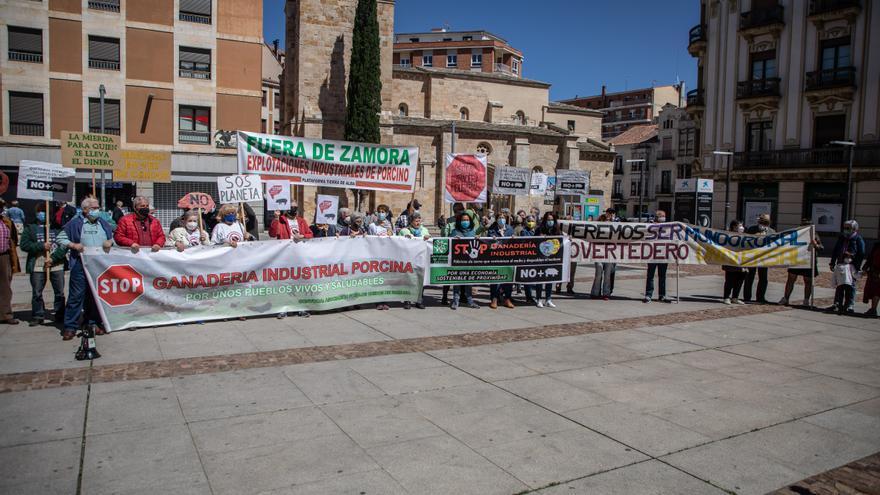 Pueblos Vivos de Zamora reclama una moratoria en las licencias de macrogranjas