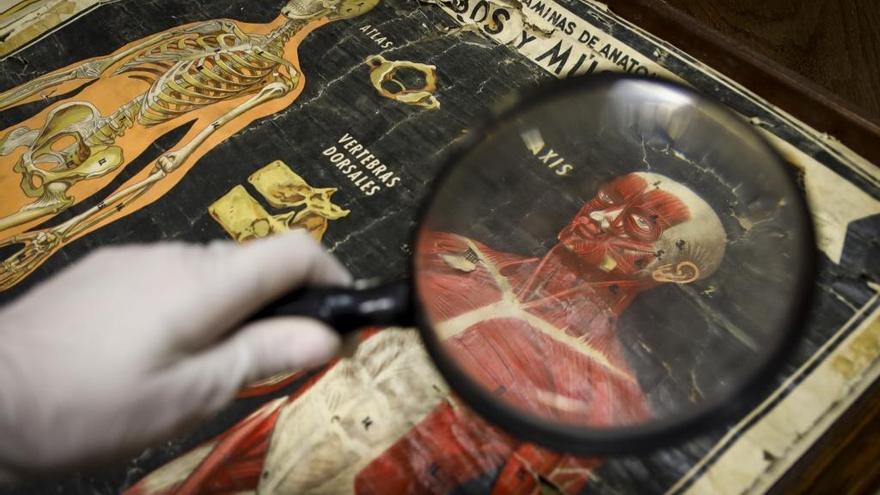 El crowdfunding llega al Museo de Pusol de Elche: busca fondos para restaurar colecciones