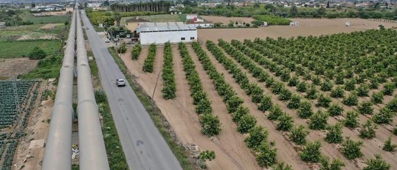 Tuberías del trasvase junto a plantaciones agrícolas en la Vega Baja.