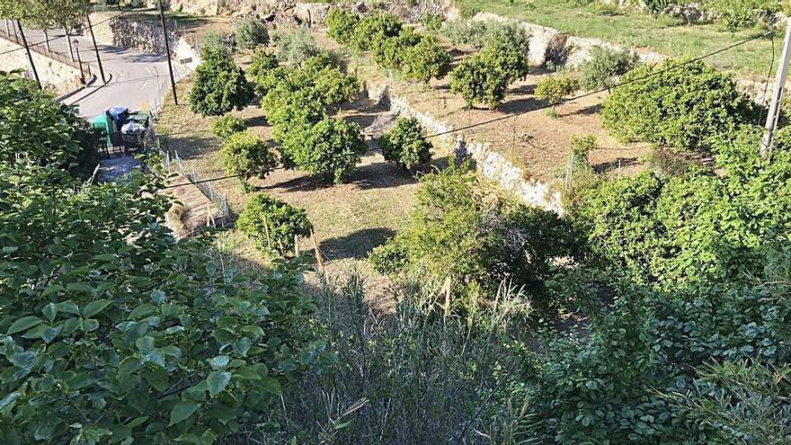 Piden retirar el planeamiento urbanístico de Estellencs y apostar por uno «sostenible»