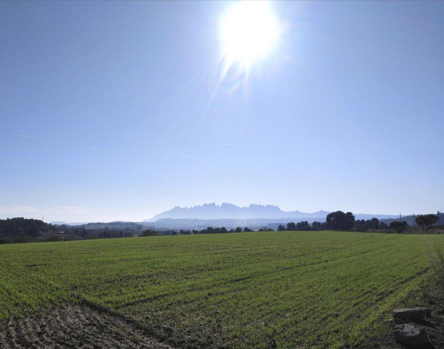 Montserrat des del camp de Lledoners.