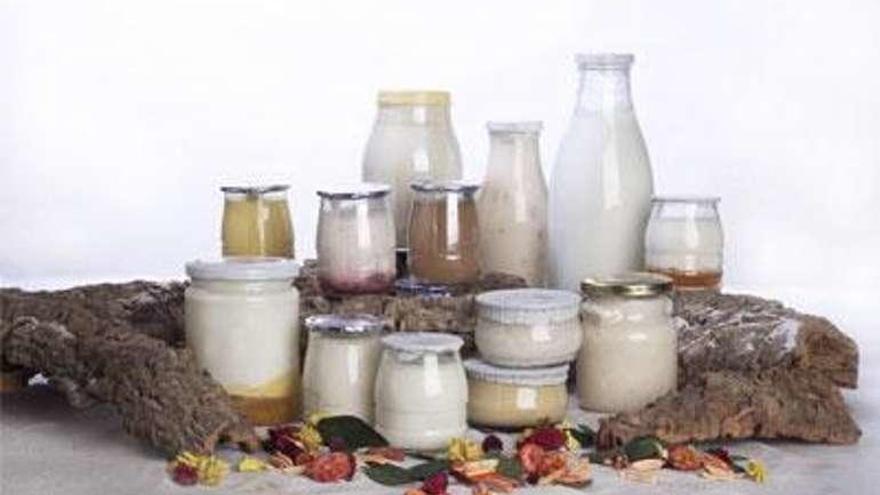 El precio de la leche de vaca se acerca al umbral de los 0,34 céntimos litro