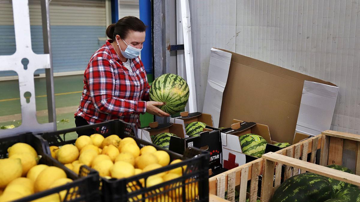 Una trabajadora en los almacenes de fruta de Mercamálaga.