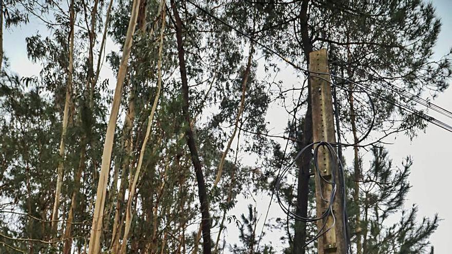 Cuarenta viviendas de Mos llevan diez días sin teléfono por el robo del cableado