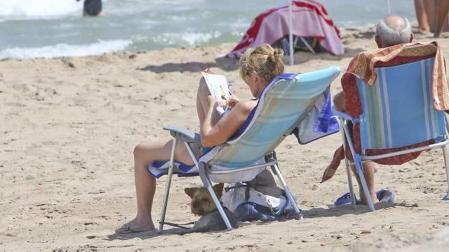 Piden a la alcaldesa que habilite una playa para perros en Agua Amarga