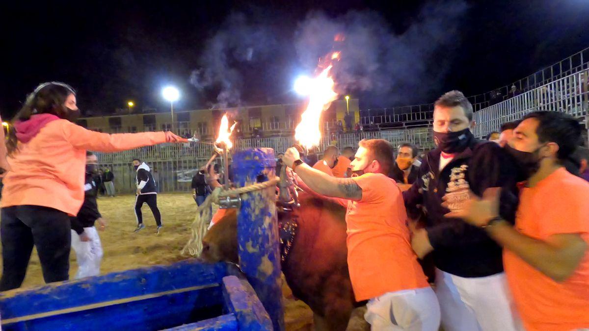 Polémica por la celebración del 'bou embolat' en Vila-real