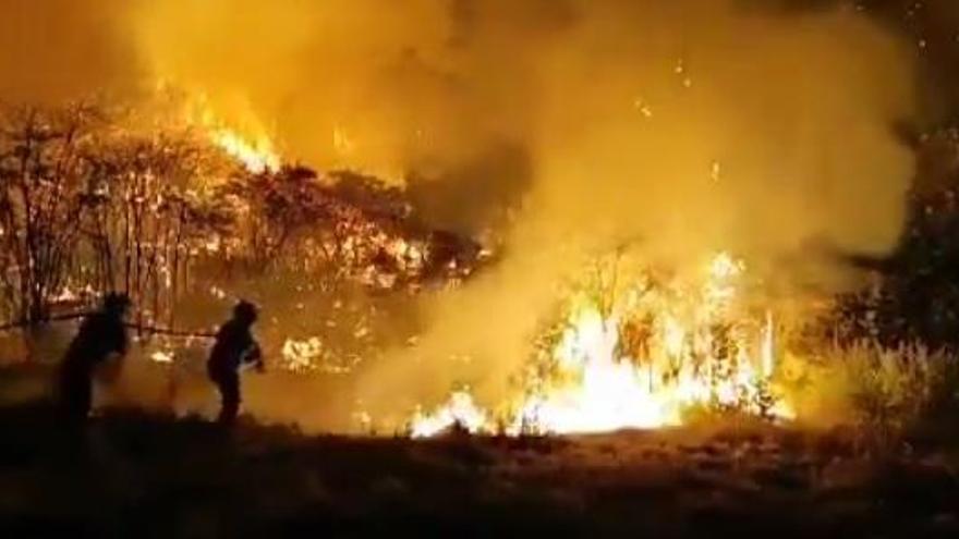 El incendio de 2019 descubre más de mil bienes etnográficos ocultos de Gran Canaria