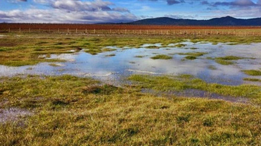 Los Lavajos de Sinarcas ganan en biodiversidad