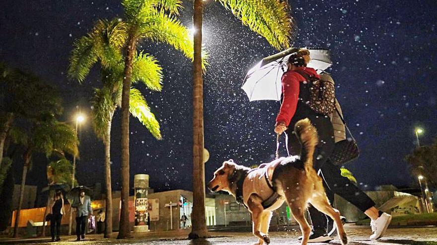 Santa Cruz de Tenerife activa su Plan de Emergencias por la alerta ante fuertes vientos